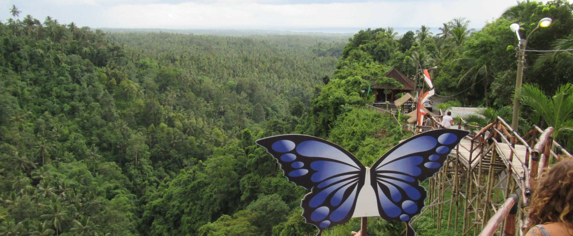 Yoga Reisen Indonesien Bali Puri Dajuma Tour Jungle Urwald Green Cliff